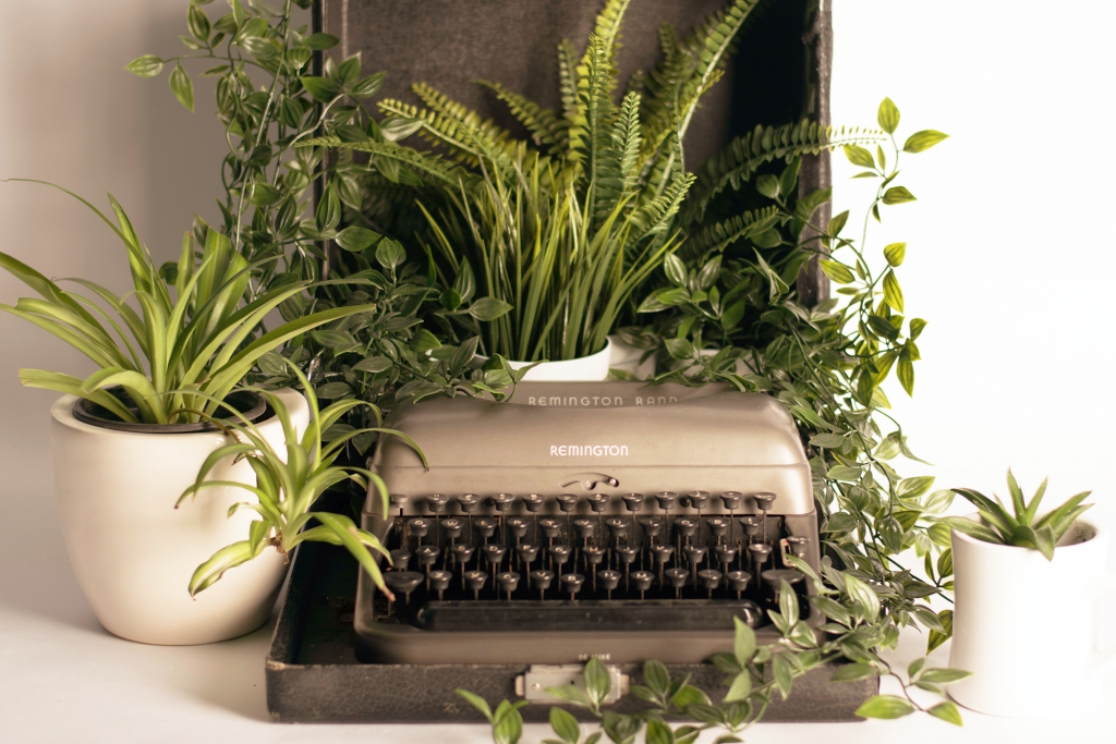 Photo of typewriter with plants on it