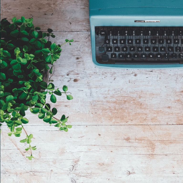 Photo of a plant and a vintage blue typewriter.